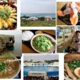 『沖縄2日め』の画像