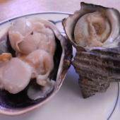 サザエストリート 水沼さざえ店 鳥羽の美味しい貝を絶妙な焼き加減で堪能!