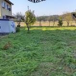 『今年初めての草刈り』の画像