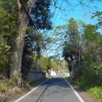個人的ドライブの記録 ~栃木の県道を走る~
