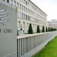 「韓国人がWTO事務局長になってはいけない」…日本、ナイジェリアの候補者を支持=韓国の反応