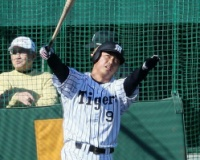 【遅報】阪神ドラ1ルーキー、フリー打撃で59スイング中20発、場外5本wwwwwwwwwww