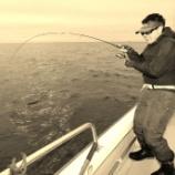 『1月16日 釣魚の捌きサービスご紹介とご利用方法 ご協力は千賀の浦市場 いとう水産様 快星丸空き情報』の画像