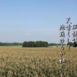 『キビ畑』の画像