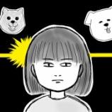 『第11話 犬好き、それだけで私は』の画像