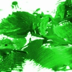 金魚一筋 100%金魚飼育ガイド