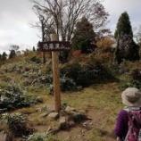 『「恐羅漢山」から道の駅「美都温泉・湯元館」と「道の駅しーまーと」』の画像