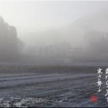 『幻想的な寒き朝』の画像