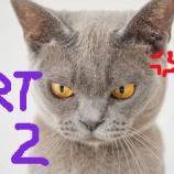 『チコちゃんでなくても叱りたくなるPART2』の画像