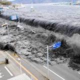 3.11東日本大震災の被災者だけど、独身の男は避難所には行くな