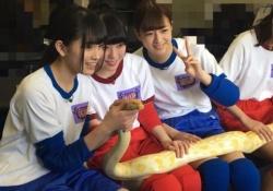 【乃木坂46】ヘビ触れるってすごいよな・・・・・