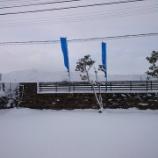 『名残の雪』の画像