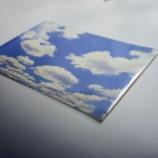 『夏の空に焦がれて』の画像