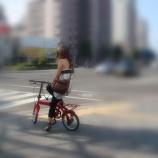 『急に夏な日2』の画像