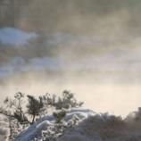 『気嵐の中の鴨たち』の画像