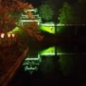 日本三大夜桜と日本三大桜 はしごした0419-20