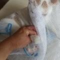猫の保定具のご紹介