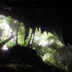 『新しい洞窟』の画像