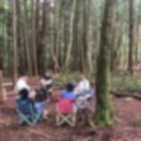 『森の中で過ごす』の画像
