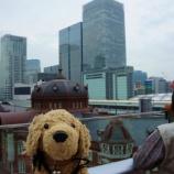 『日本です ~【東京駅をみてみる】』の画像