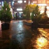 『ゲリラ豪雨に襲われて』の画像
