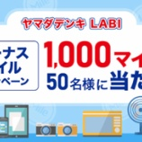 『【ANAカード会員限定】ヤマダデンキ利用で抽選1000マイルプレゼン!』の画像