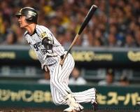 【朗報】狩野恵輔さん、2年連続でクビ回避