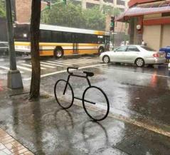 冷たい雨の一日
