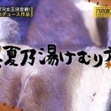 『『真夏乃湯けむり旅』きたあああww ってか熱海ロケってこれだったのか!【乃木坂46】』の画像