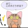 【保護猫】この子、どうする?【予期せぬ出来事】