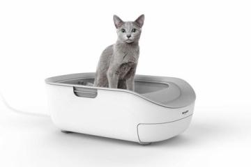 海外「日本だけの唯一無二」SHARP ネコ用ヘルスチェック付きトイレに唖然とする海外の人々
