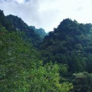 美しい水晶淵に魅せられて。(高知県仁淀川町)