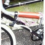 『うなぎいぬ(自転車)日報』の画像
