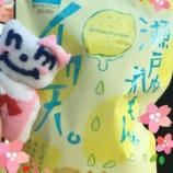 『ニッタちゃんダイアリー ~遂に!桜開花♪~』の画像