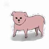 『第14話 毛のない犬と理解不能な告白』の画像