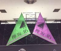 【欅坂46】欅坂のこの旗かっこよくてめちゃめちゃ好きなんだが