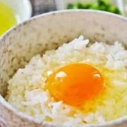 いつから 卵