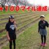 <3/13 朝ラン@ネクスト・ジェネレーション・ランナー>