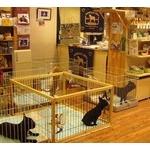 ペットショップに監禁されている動物をすべて逃してやりたいんだがなんとかできないか?
