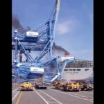 【動画】韓国、釜山港で大型コンテナ船が港湾クレーンに衝突!クレーンが崩壊! [海外]