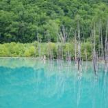 『青い池』の画像