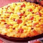 アイスランド大統領「パイナップルピザ禁止法案を作りたい」