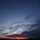 『投稿:LAOWA購入記~CP+オンラインセミナーを見て決めた&目黒川の桜①【追記】2021/03/27』の画像