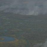 『【海外ニュース】ブラジルのパンタナル森林火災の現状がヤバすぎる』の画像