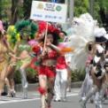 2010年 横浜開港記念みなと祭 国際仮装行列 第58回 ザ よこはま パレード その24(GRCBガランチード編)