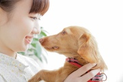 【新潟】動物を売らないペットショップ、人とペットの共存目指す 殺処分の根源的原因、ペットの「生体販売」を中止