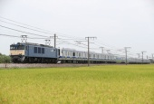 『2017/8/28運転 E531系K426編成越後石山配給』の画像
