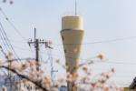 桜の街、交野さんぽ・みちくさ 〜ちょっと藤が尾編〜