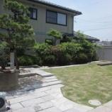 『芝生』の画像