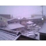 『うたう雪だるま・・・断念。』の画像